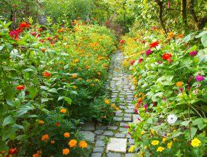 jardín de una empresa como espacio verde para el entorno laboral
